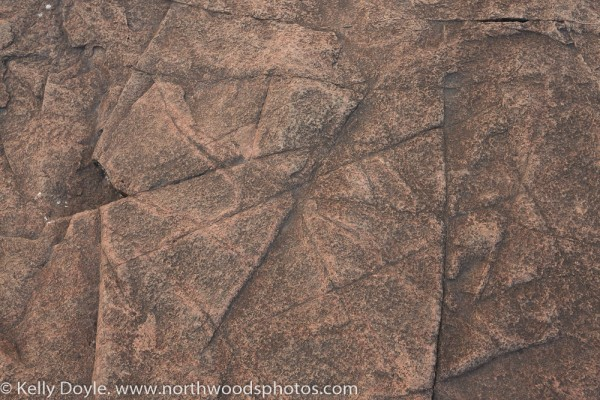 High Resolution Textures For Photoshop North Woods Photos