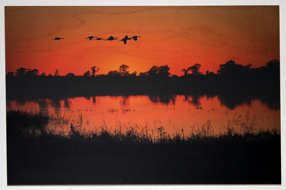 Crex Meadows Sunset on Maple
