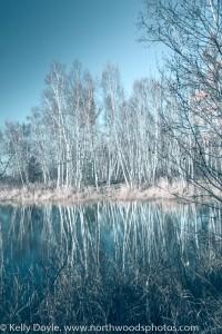 Topaz Restyle Frozen Landscape