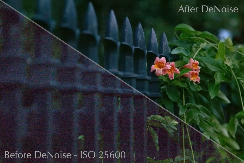 Fence Before & After DeNoise