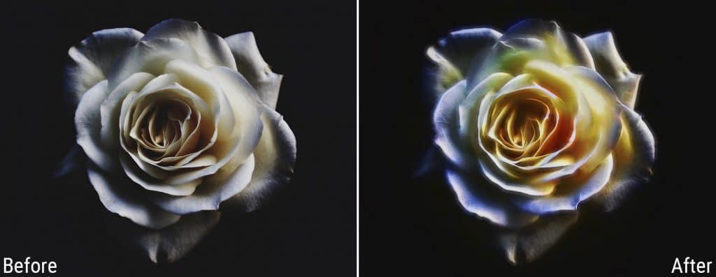 Topaz Labs Glow 2 Flower
